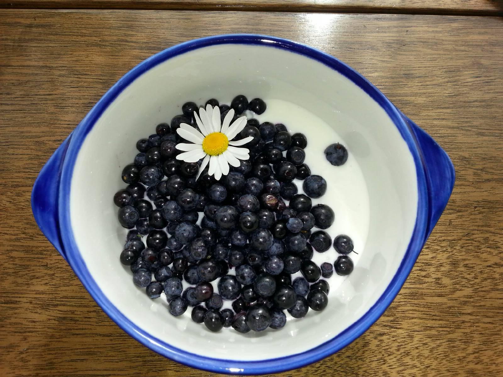 Frokost med ferske blåbær