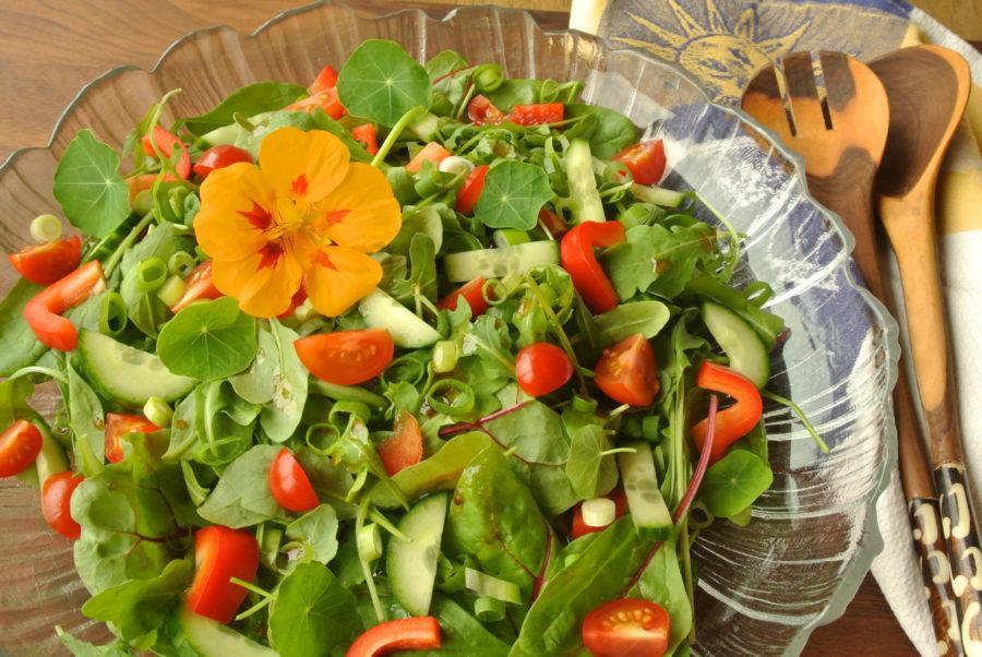Grønn salat (som passer til alt)